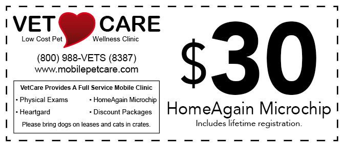 Get Your HomeAgain Microchip Coupon!